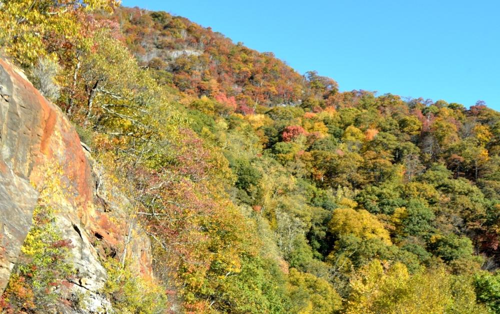 Phía trên đầu vừa đá vừa cây đủ màu rất đẹp mắt.