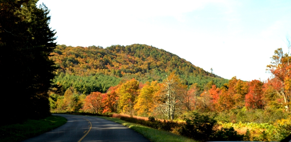 Đoạn đường đầy màu sắc.