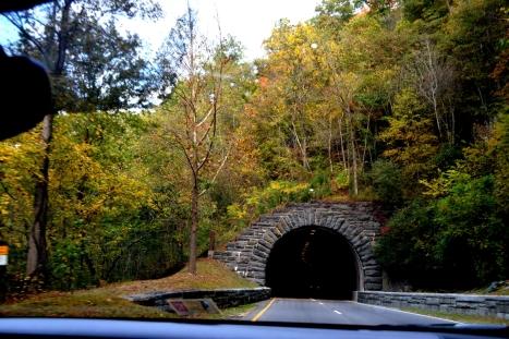 Thì được chui vào đường hầm đẹp này.