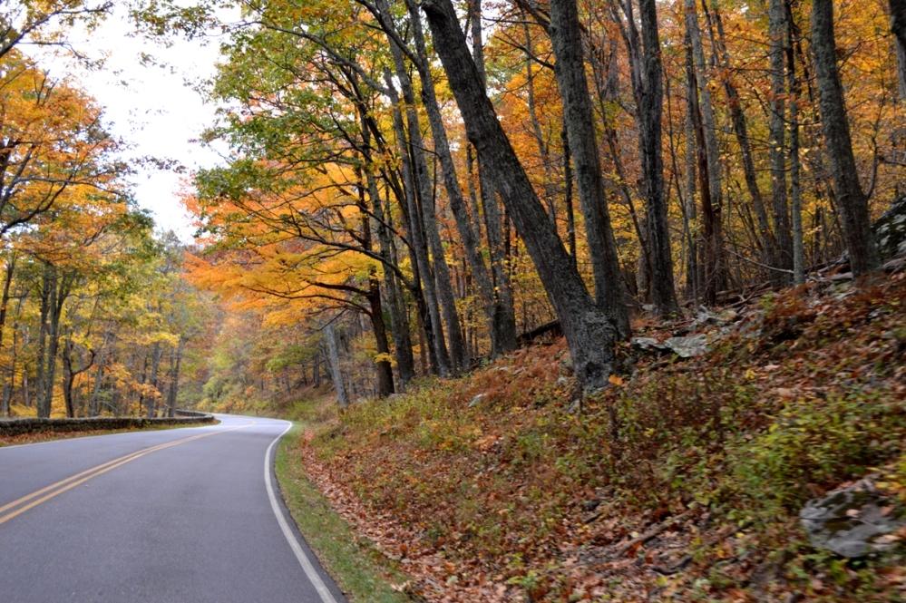 Đường xuống Blue Ridge Parkway - National Parkway (Xa lộ Công viên Quốc Gia).