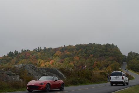 Không có mây mù che thì màu sắc của khu đồi này sẽ rất đẹp óng ánh.