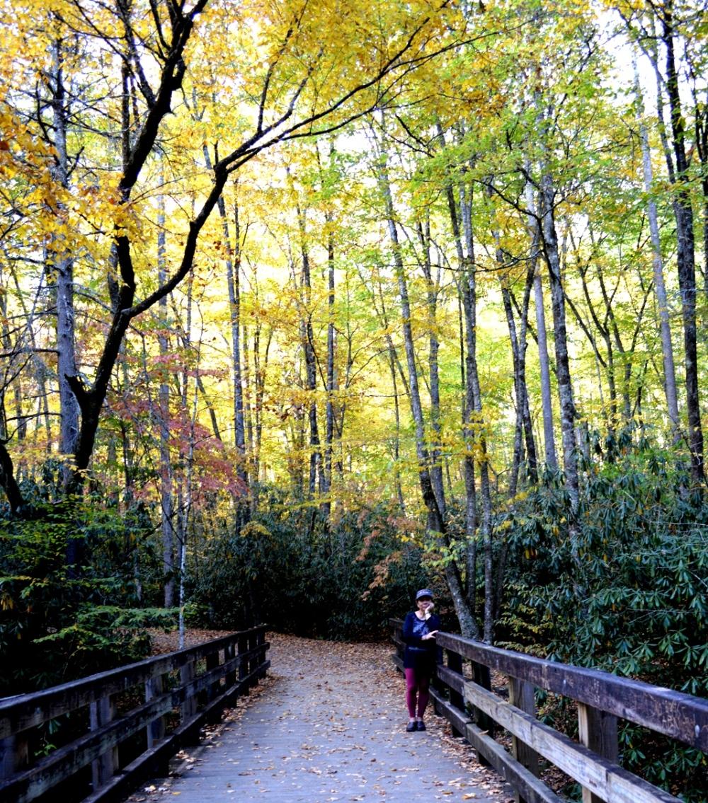 Đành phải quay trở lại thôi vì hôm nay không có đủ giờ để hike vào núi đẹp đàng sau. Hu hu...
