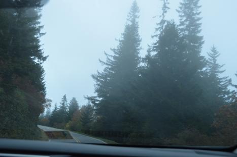 Ngã rẽ lên ngọn núi Mount Mitchell NC.