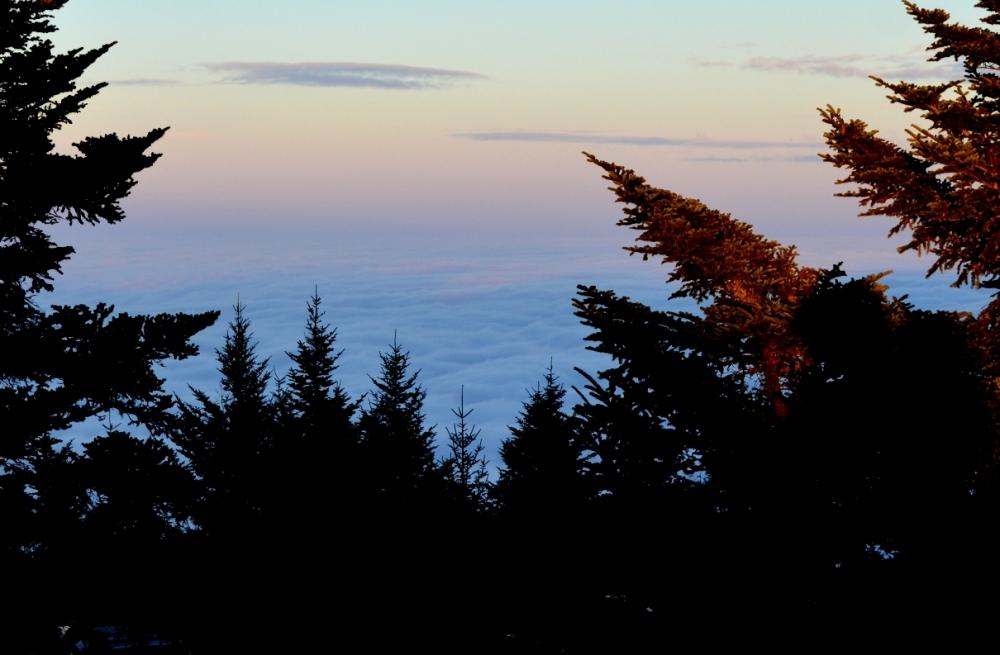Nhìn bên phải từ đỉnh Mount Mitchell.