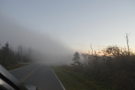 Đám mây hồi nãy dưới kia đã bò lên đến đây rồi.