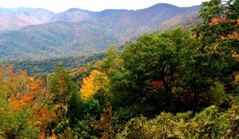 Rặng núi đầy màu sắc phía sau bị đám cây xanh che gần hết.