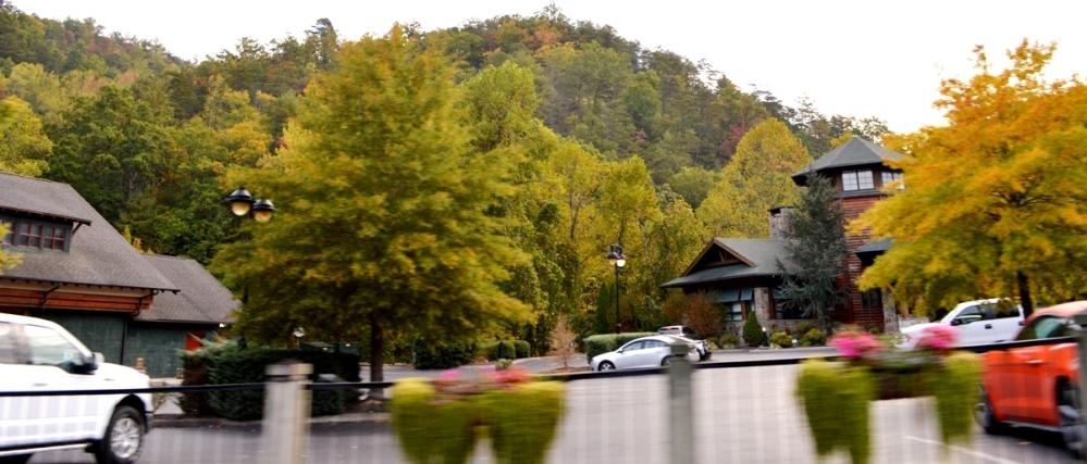 Xung quanh vẫn còn cây lá đầy màu sắc chập chùng.