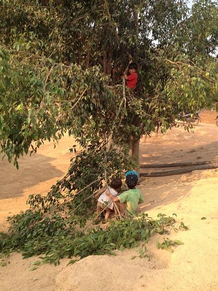Ba em nhỏ con bố mẹ Kỳ nghịch phá chặt cành cây.