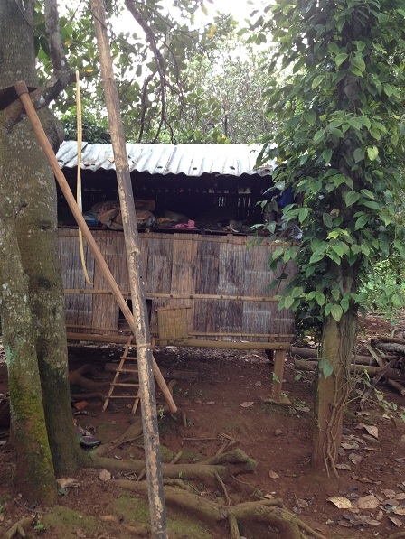 Chuồng gà của gia đình bố Sriêng, ở Sóc Bù Ramang – Bù Đăng.