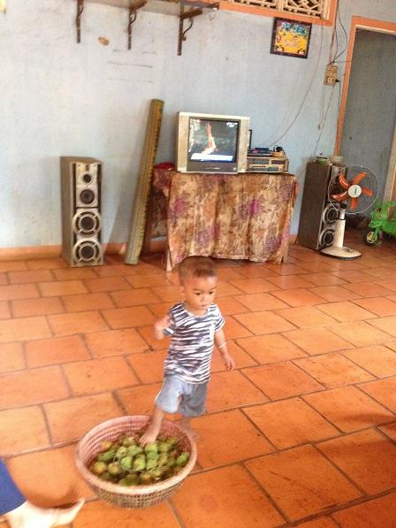 Cháu ngoại của ông bà Sriêng Sóc Bù Ramang – Bù Đăng, chơi trên rổ chôm chôm mời khách.