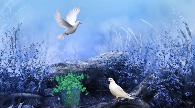 Người xây dựng hòa bình