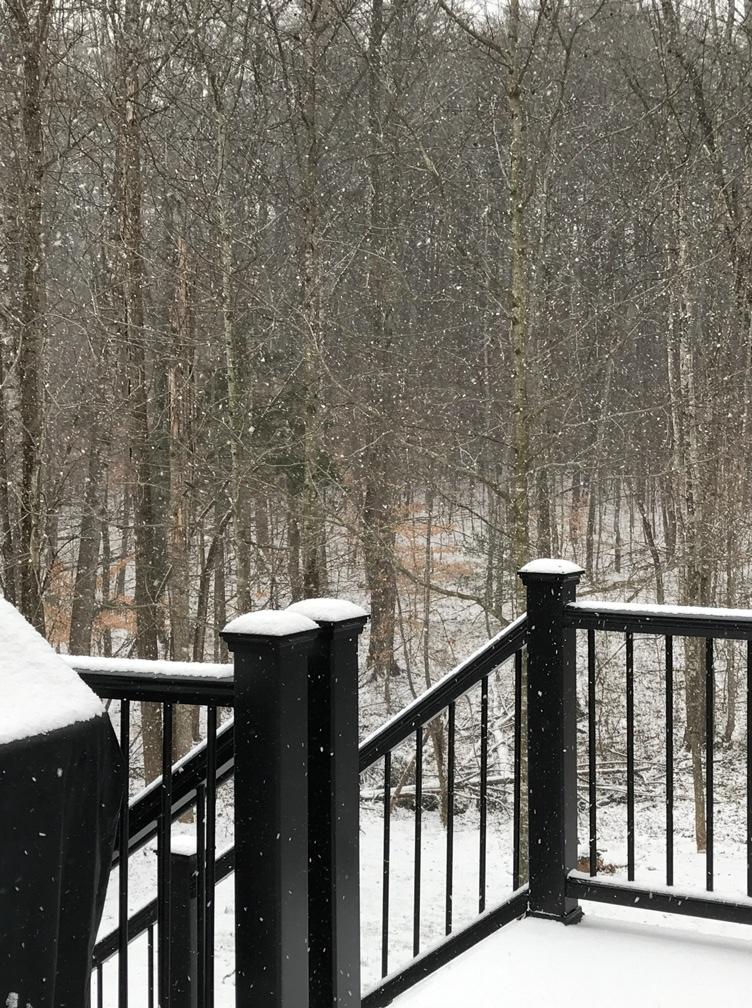 snowfalling-1