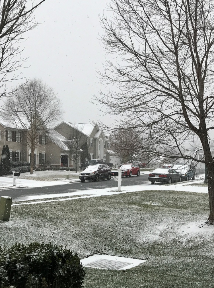 snowfalling-3