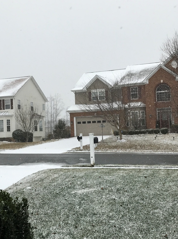 snowfalling-4