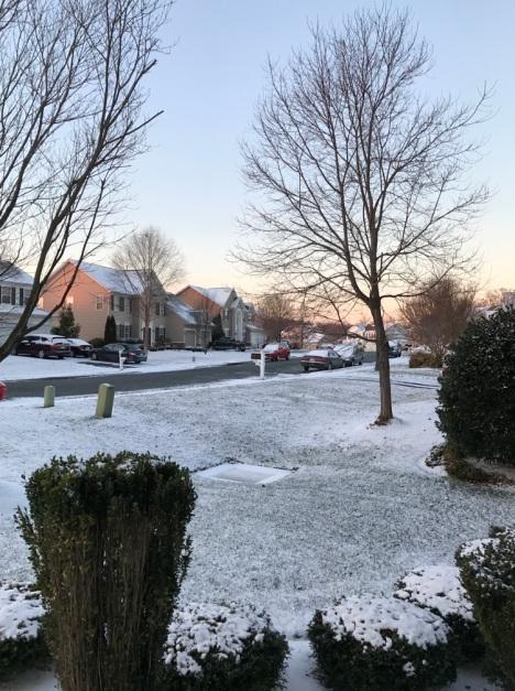 snowfalling-6