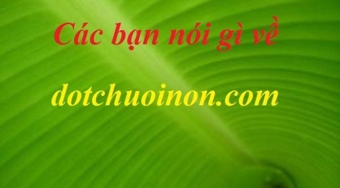 Các bạn nói gì về dotchuoinon.com?