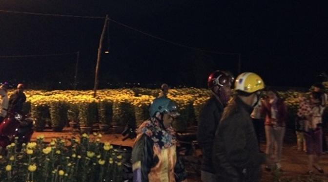 Chợ hoa đêm ba mươi Tết