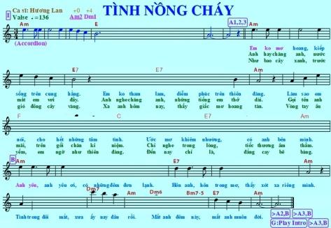 tinhnongchay_viet1