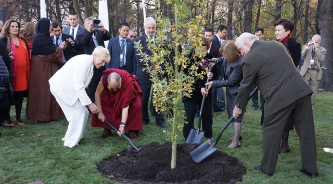 Tầm quan trọng của trồng cây và bảo vệ cây