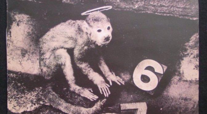 Monkey gone to heaven – Anh khỉ đã đến thiên đường