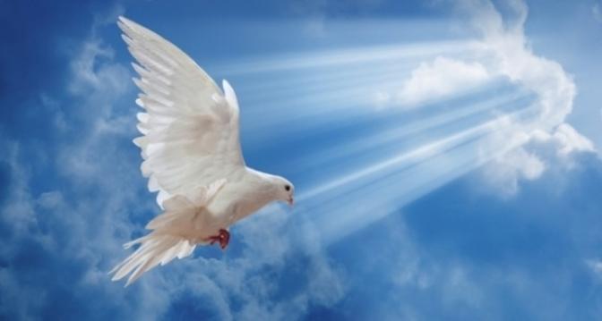 Tâm linh – nền tảng của cuộc sống