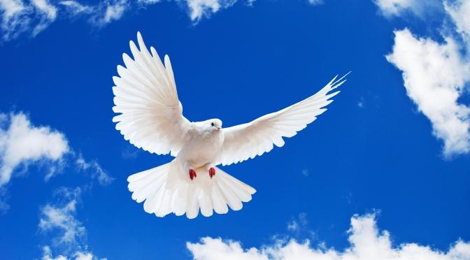 Prayer 263
