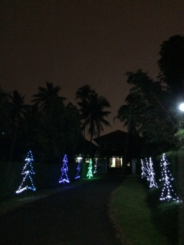 1 - Ảnh đường vào Tu viện Nữ Vương Hòa Bình – Bmt trong mùa Giáng Sinh.