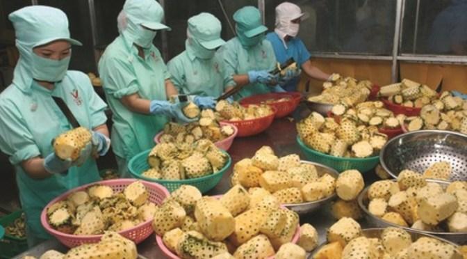 Hoạt động phi nông nghiệp trong phát triển nông thôn: Chiến lược Nông thôn, Ngân Hàng Thế Giới2001