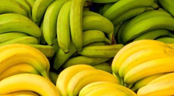 Chỉ được ăn mỗi lần một trái