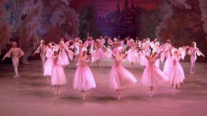 Điệu waltz của những đóa hoa