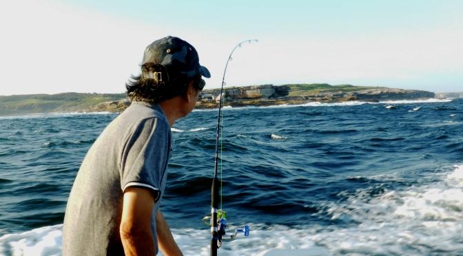 """Nghe """"La mer"""" khi bồng bềnh trên vịnh biển Botany"""