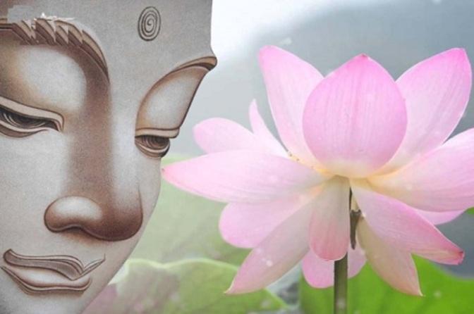 Phật triết là đời