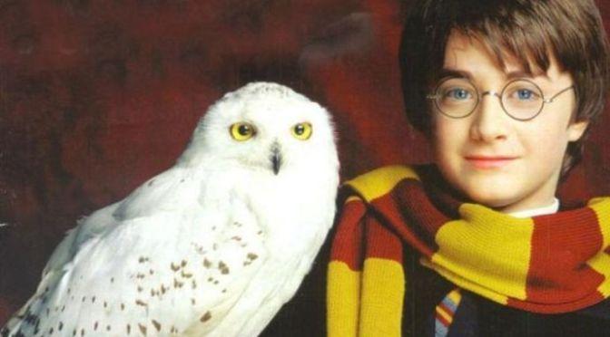 Khúc nhạc hiệu của Hedwig – phim Harry Potter