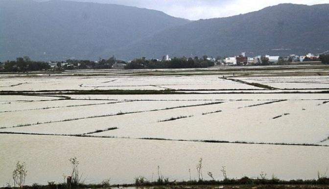 Mùa lụt ở buôn làng