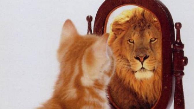 Tự tin và thấy được sức mạnh của mình
