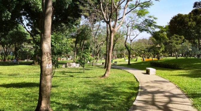 Từ một chỗ khuất trong công viên