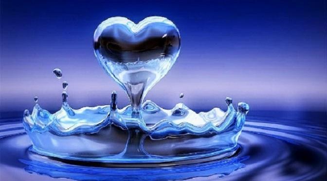 Trái tim thanh tịnh chuyển hóa thế giới