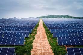 Vietnam: New draft decision on the future Solar Auction Program | Đọt Chuối  Non